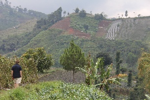 mountainous farming area of Bandung Indonesia